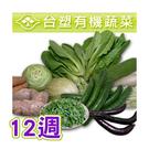台塑有機蔬菜~12週