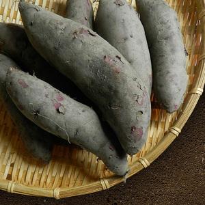 【 台農心安栽種紫玉地瓜5包組(600G/包)】
